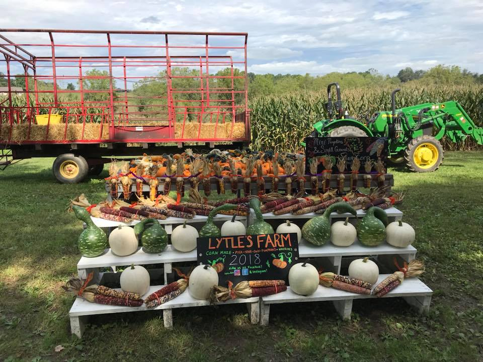 farm stand with tractor